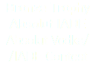 Bronze Trophy Absolut IADE Absolut Vodka/ /IADE Contest